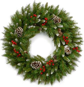 5: National Tree Company 24 Inch Frosted Berry Wreath with Red Berries and Cones (FRB-24W-1)