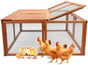 3. Magshion Spacious Wooden Chicken Coop Bunny Rabbit Hutch Pet Hutch Playpen House