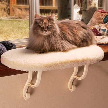 5. K&H PET PRODUCTS Kitty Sill